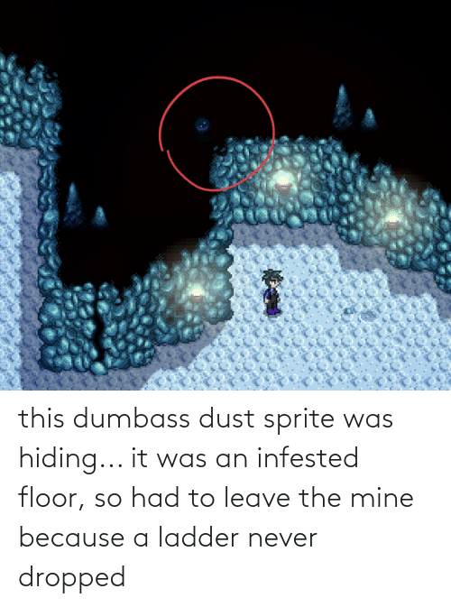 Floor: this dumbass dust sprite was hiding... it was an infested floor, so had to leave the mine because a ladder never dropped