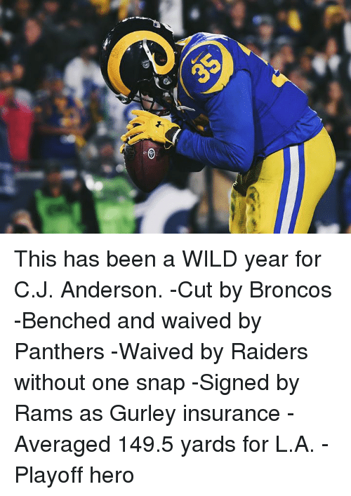 gurley: This has been a WILD year for C.J. Anderson.  -Cut by Broncos  -Benched and waived by Panthers  -Waived by Raiders without one snap  -Signed by Rams as Gurley insurance  -Averaged 149.5 yards for L.A.  -Playoff hero