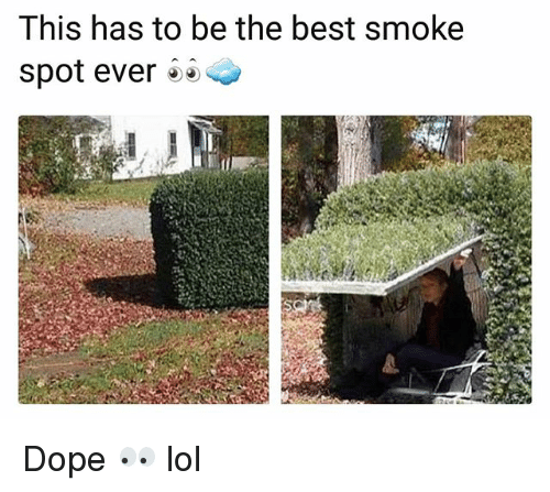 Dope, Funny, and Lol: This has to be the best smoke  spot ever Dope 👀 lol