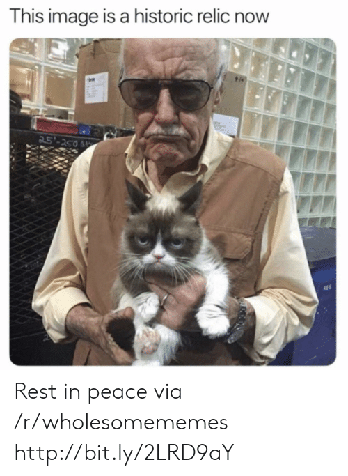 rest in peace: This image is a historic relic now  25'-250 Rest in peace via /r/wholesomememes http://bit.ly/2LRD9aY