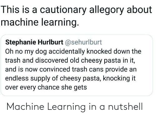 Learning: This is a cautionary allegory about  machine learning.  Stephanie Hurlburt @sehurlburt  Oh no my dog accidentally knocked down the  trash and discovered old cheesy pasta in it,  and is now convinced trash cans provide an  endless supply of cheesy pasta, knocking it  over every chance she gets Machine Learning in a nutshell