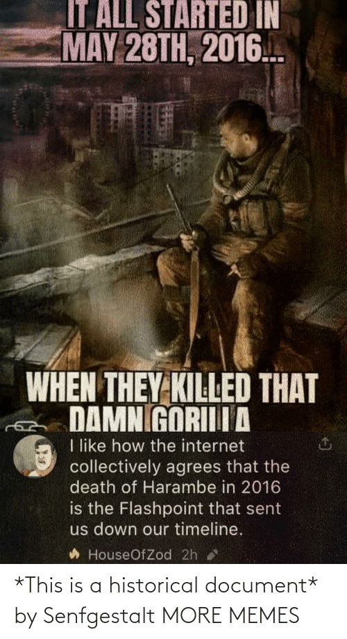 Historical: *This is a historical document* by Senfgestalt MORE MEMES