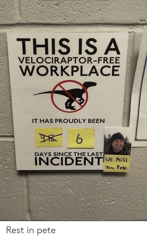 Velociraptor, Free, and Been: THIS IS A  VELOCIRAPTOR-FREE  WORKPLACE  IT HAS PROUDLY BEEN  DAYS SINCE THE LAST  INCIDENTe Miss  a Pete Rest in pete