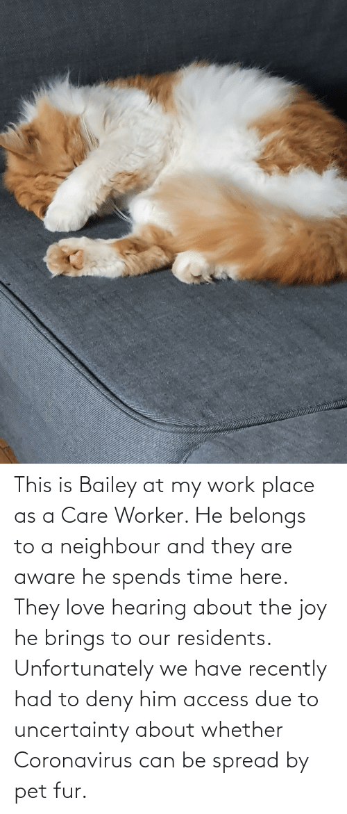 deny: This is Bailey at my work place as a Care Worker. He belongs to a neighbour and they are aware he spends time here. They love hearing about the joy he brings to our residents. Unfortunately we have recently had to deny him access due to uncertainty about whether Coronavirus can be spread by pet fur.