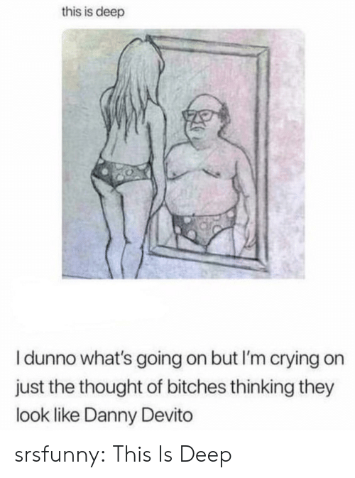 Crying, Tumblr, and Blog: this is deep  I dunno what's going on but I'm crying on  just the thought of bitches thinking they  look like Danny Devito srsfunny:  This Is Deep