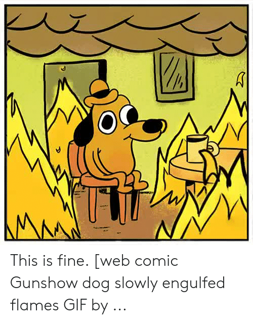 This Is Fine Dog Fire Meme Tote Bag By Luna7 Redbubble