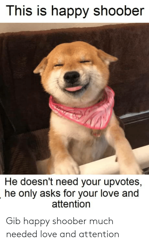 Upvotes: This is happy shoober  He doesn't need your upvotes,  he only asks for your love and  attention Gib happy shoober much needed love and attention