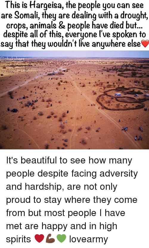 Animals, Beautiful, and Memes: This is Hargeisa, the people you can see  are Somali, they are dealing with a drought,  crops, animals & people have died but...  despite all of this, everyone l've spoken to  say that they wouldn't live anywhere else  @chakA It's beautiful to see how many people despite facing adversity and hardship, are not only proud to stay where they come from but most people I have met are happy and in high spirits ❤️💪🏿💚 lovearmy