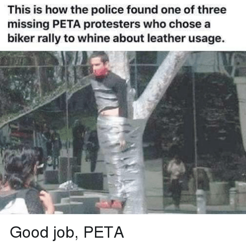 Whine: This is how the police found one of three  missing PETA protesters who chose a  biker rally to whine about leather usage. Good job, PETA