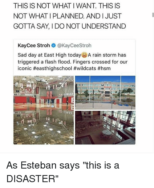 "Memes, Rain, and Today: THIS IS NOT WHAT I WANT. THIS IS  NOT WHAT I PLANNED. AND IJUST  GOTTA SAY, I DO NOT UNDERSTAND  KayCee Stroh @KayCeeStroh  Sad day at East High today' A rain storm has  triggered a flash flood. Fingers crossed for our  iconic #easthighschool #wildcats #hsm  it  Il As Esteban says ""this is a DISASTER"""