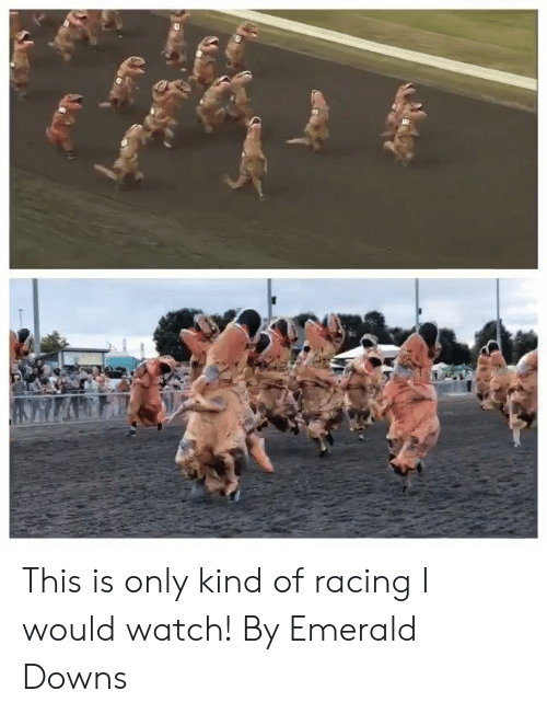 Dank, Watch, and 🤖: This is only kind of racing I would watch!  By Emerald Downs