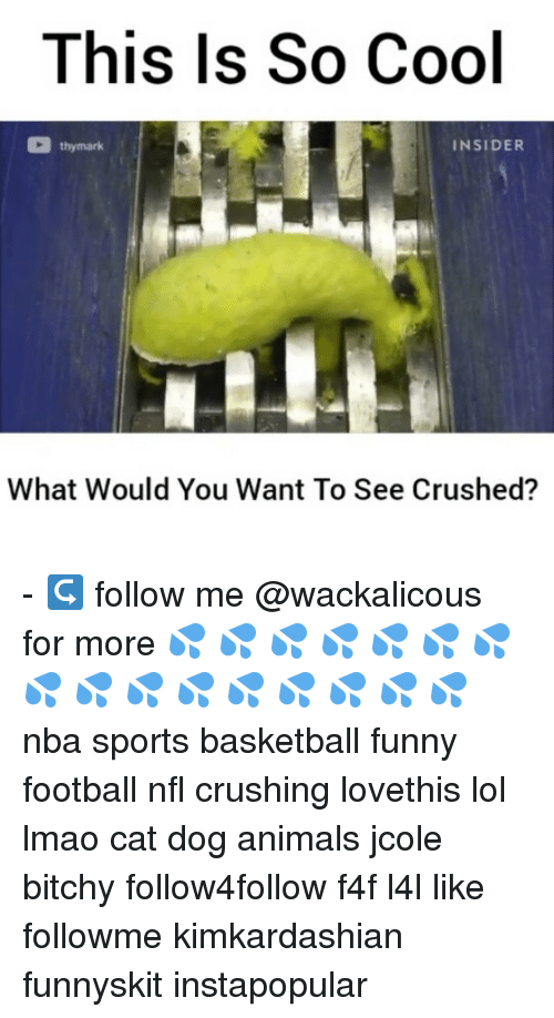 funny football: This Is So Cool  thy mark  INSIDER  What Would You Want To See Crushed? - ↪ follow me @wackalicous for more 💦 💦 💦 💦 💦 💦 💦 💦 💦 💦 💦 💦 💦 💦 💦 💦 nba sports basketball funny football nfl crushing lovethis lol lmao cat dog animals jcole bitchy follow4follow f4f l4l like followme kimkardashian funnyskit instapopular