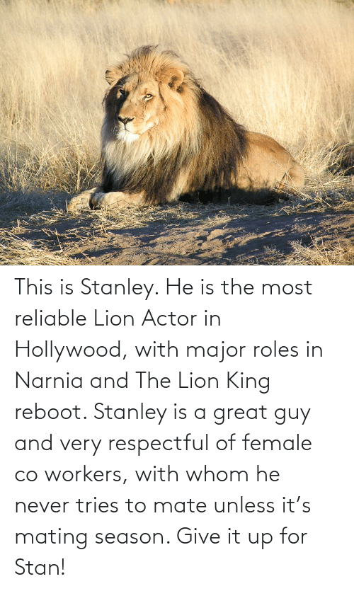 respectful: This is Stanley. He is the most reliable Lion Actor in Hollywood, with major roles in Narnia and The Lion King reboot. Stanley is a great guy and very respectful of female co workers, with whom he never tries to mate unless it's mating season. Give it up for Stan!