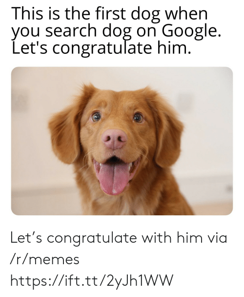 congratulate: This is the first dog when  you search dog on Google.  Let's congratulate him. Let's congratulate with him via /r/memes https://ift.tt/2yJh1WW
