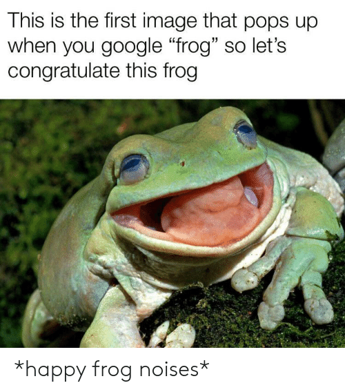 """congratulate: This is the first image that pops up  when you google """"frog"""" so let's  congratulate this frog *happy frog noises*"""