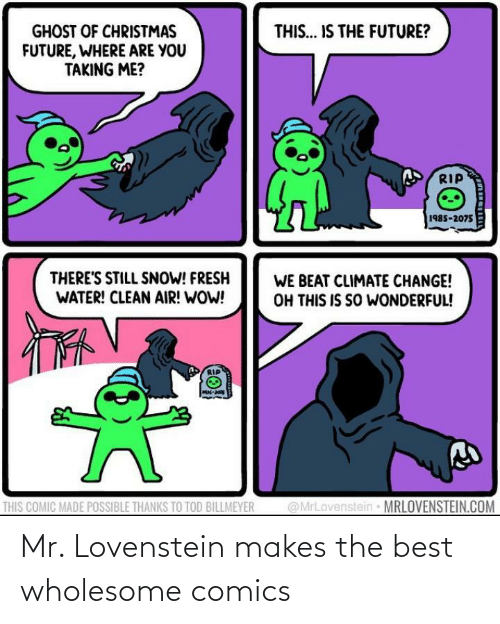 Snow: THIS... IS THE FUTURE?  GHOST OF CHRISTMAS  FUTURE, WHERE ARE YOU  TAKING ME?  RIP  1985-2075  THERE'S STILL SNOW! FRESH  WATER! CLEAN AIR! WOW!  WE BEAT CLIMATE CHANGE!  OH THIS IS SO WONDERFUL!  @MrLovenstein MRLOVENSTEIN.COM  THIS COMIC MADE POSSIBLE THANKS TO TOD BILLMEYER Mr. Lovenstein makes the best wholesome comics