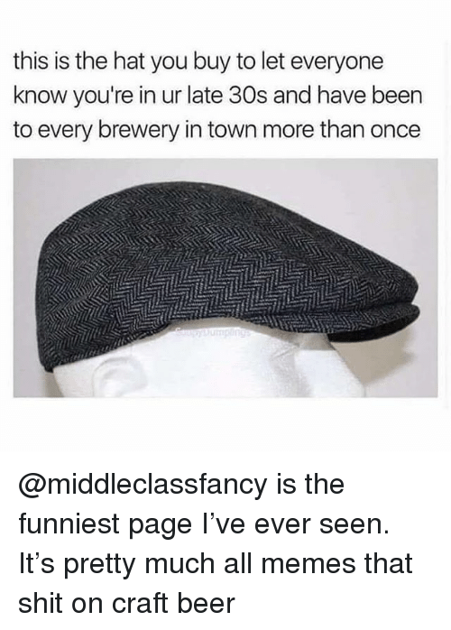 All Memes: this is the hat you buy to let everyone  know you're in ur late 30s and have been  to every brewery in town more than once @middleclassfancy is the funniest page I've ever seen. It's pretty much all memes that shit on craft beer