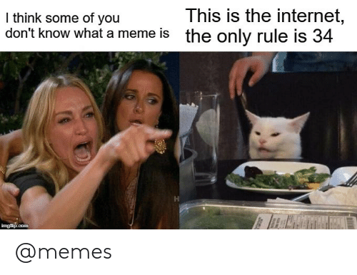 Internet, Meme, and Memes: This is the internet,  the only rule is 34  I think some of you  don't know what a meme is  imgflip.com @memes