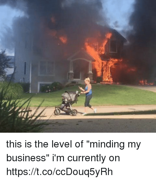 """Memes, Business, and 🤖: this is the level of """"minding my business"""" i'm currently on https://t.co/ccDouq5yRh"""