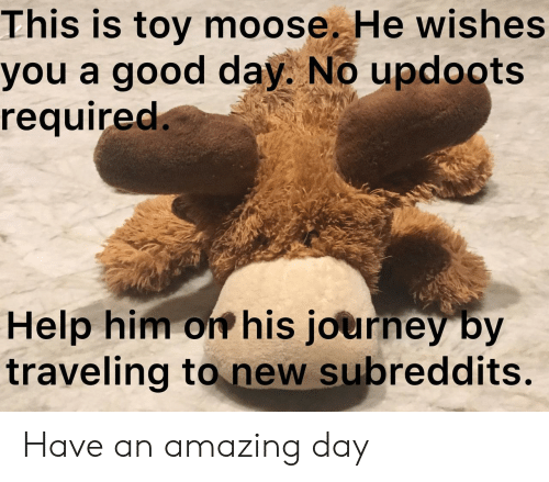 Journey, Good, and Help: This is toy moose. He wishes  you a good day. No updoots  required.  Help him on his journey by  traveling to new subreddits. Have an amazing day