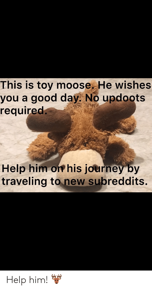 Wishes: This is toy moose. He wishes  you a good day. No updoots  required.  Help him on his journey by  traveling to new subreddits. Help him! 🦌
