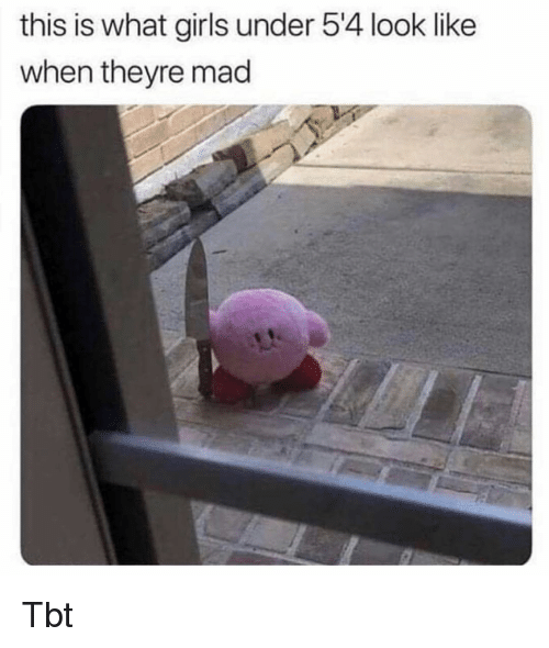 Girls, Memes, and Tbt: this is what girls under 5'4 look like  when theyre mad Tbt