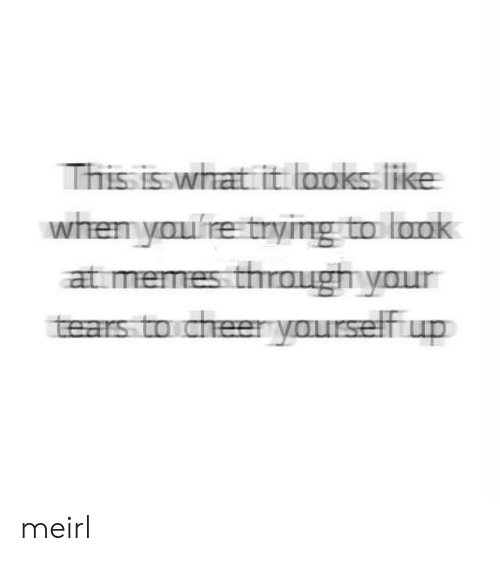 Memes, MeIRL, and What: This is what it aoks like  when youre trying to laok  at memes through your  tears to cheeryourself up meirl