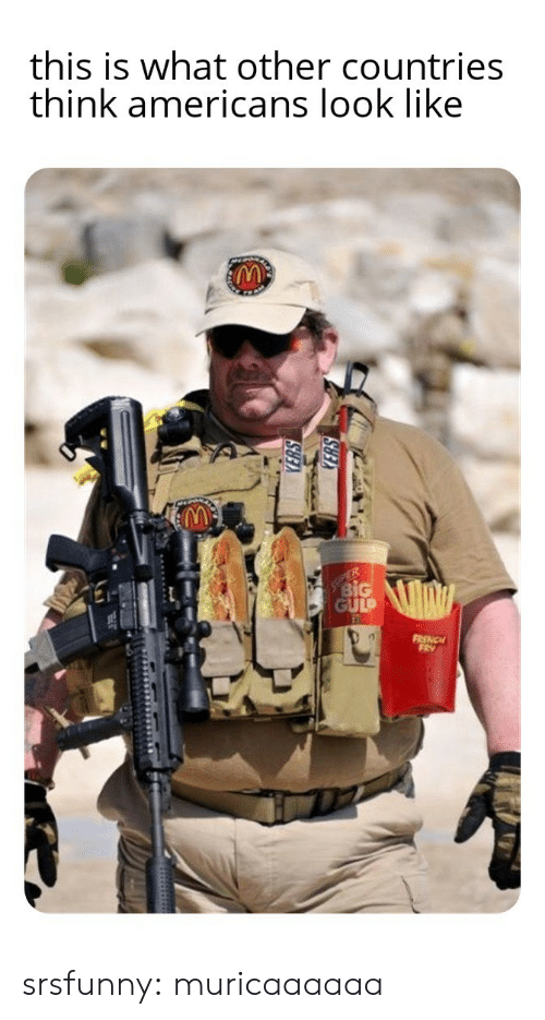 Countries: this is what other countries  think americans look like  ER  BiG  GULP  FRENCH  FRY srsfunny:  muricaaaaaa