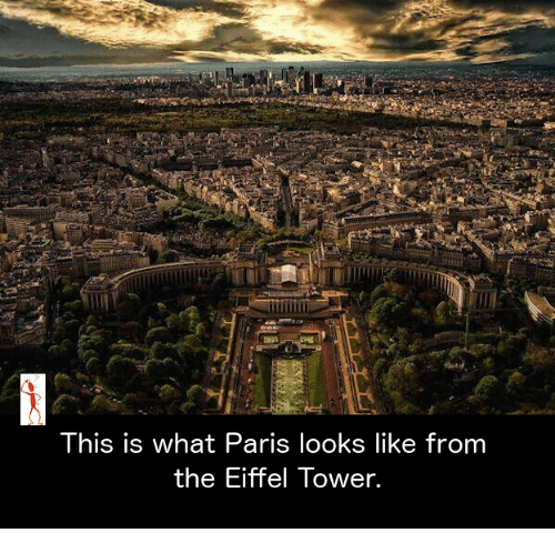 Eiffel Towering: This is what Paris looks like from  the Eiffel Tower.