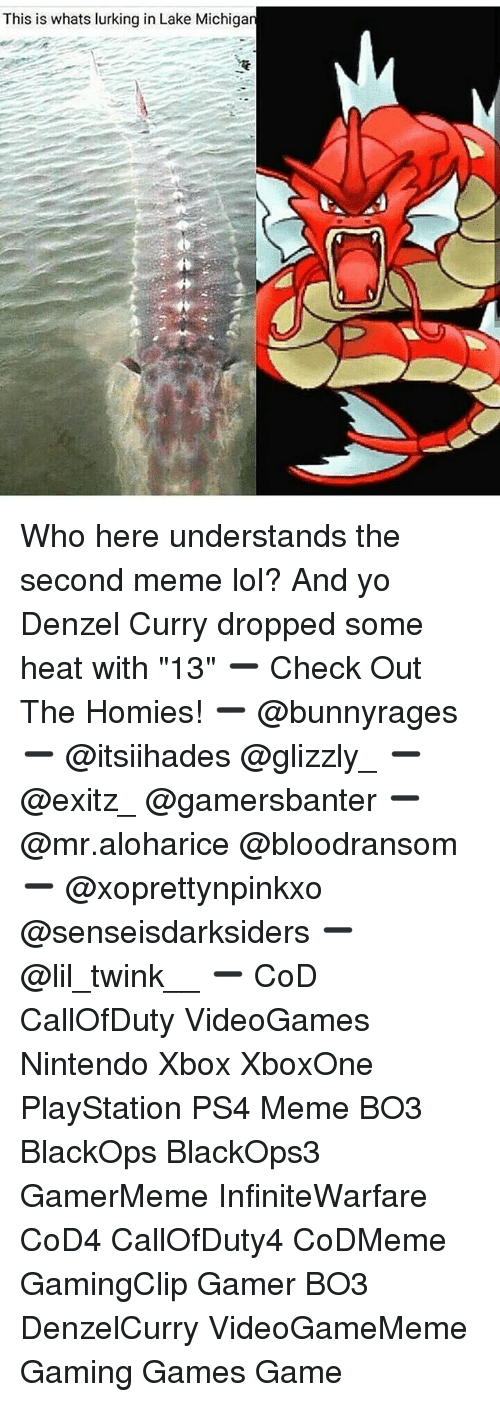 "Lol, Lurking, and Meme: This is whats lurking in Lake Michiga Who here understands the second meme lol? And yo Denzel Curry dropped some heat with ""13"" ➖ Check Out The Homies! ➖ @bunnyrages ➖ @itsiihades @glizzly_ ➖ @exitz_ @gamersbanter ➖ @mr.aloharice @bloodransom ➖ @xoprettynpinkxo @senseisdarksiders ➖ @lil_twink__ ➖ CoD CallOfDuty VideoGames Nintendo Xbox XboxOne PlayStation PS4 Meme BO3 BlackOps BlackOps3 GamerMeme InfiniteWarfare CoD4 CallOfDuty4 CoDMeme GamingClip Gamer BO3 DenzelCurry VideoGameMeme Gaming Games Game"