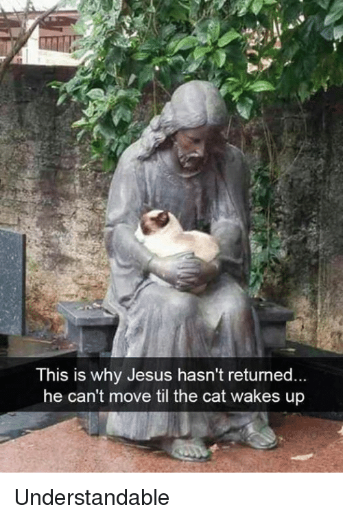 understandable: This is why Jesus hasn't returned.  he can't move til the cat wakes up Understandable