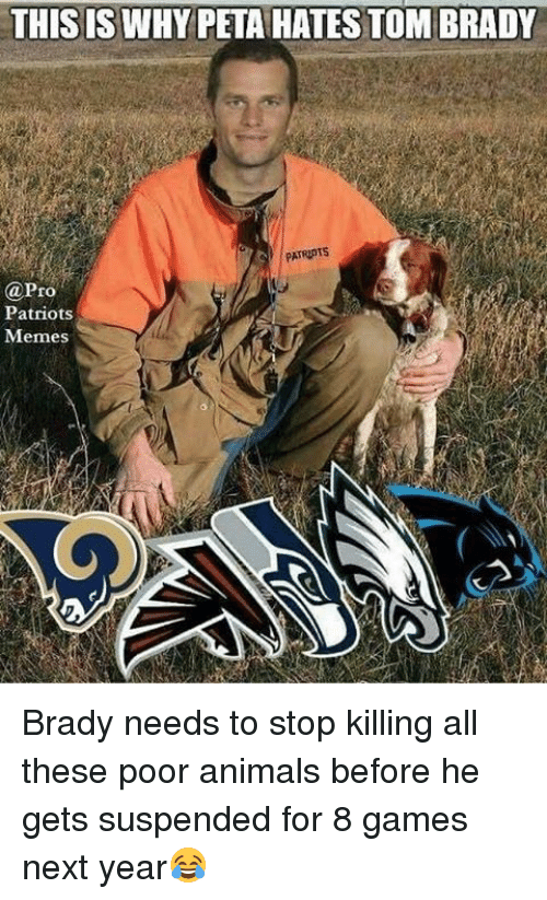 Patriots Memes: THIS IS WHY PETAHATES TOM BRADY  @Pro  Patriots  Memes Brady needs to stop killing all these poor animals before he gets suspended for 8 games next year😂