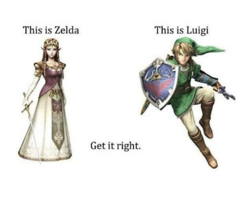 Zelda, Luigi, and This: This is Zelda  This is Luigi  Get it right.
