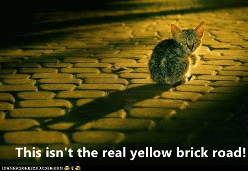 The Real, Com, and Brick: This isn't the real yellow brick road!  CANHASCHEE2EURGER cOM