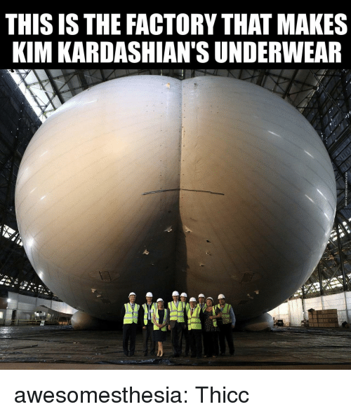 Kardashians, Tumblr, and Blog: THIS ISTHE FACTORY THAT MAKES  KIM KARDASHIAN'S UNDERWEAR awesomesthesia:  Thicc