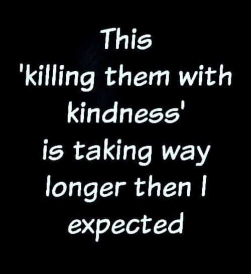 Memes, Kindness, and 🤖: This  'killing them with  kindness  is taking way  longer then l  expected