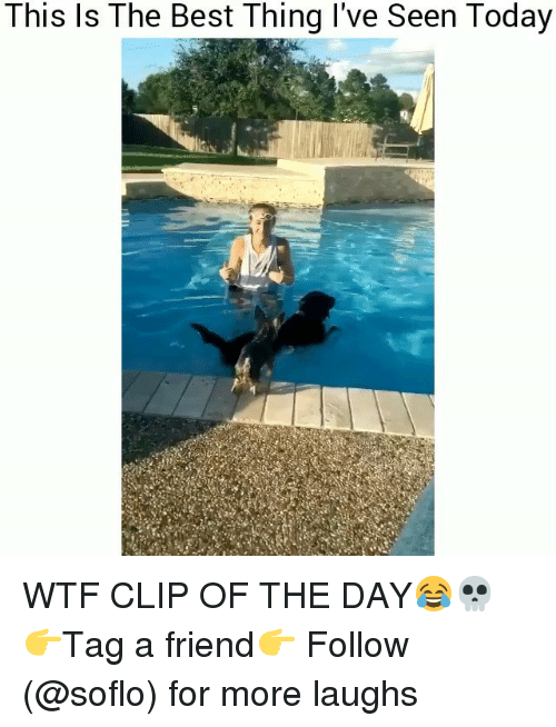 Memes, Wtf, and Best: This ls The Best Thing l've Seen Today WTF CLIP OF THE DAY😂💀 👉Tag a friend👉 Follow (@soflo) for more laughs
