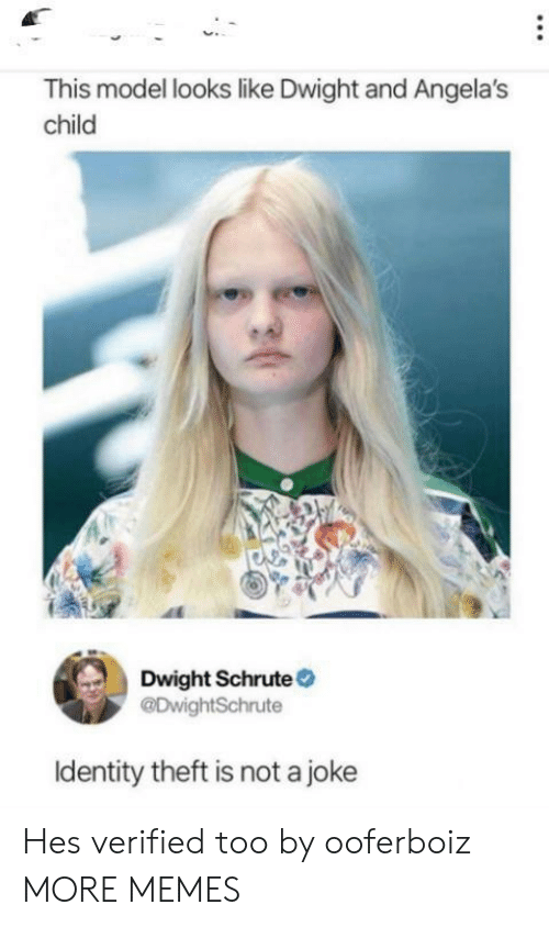 Dank, Memes, and Target: This model looks like Dwight and Angela's  child  Dwight Schrute  @DwightSchrute  Identity theft is not a joke Hes verified too by ooferboiz MORE MEMES
