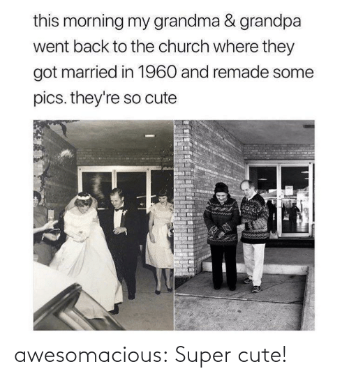 this morning: this morning my grandma & grandpa  went back to the church where they  got married in 1960 and remade some  pics. they're so cute awesomacious:  Super cute!