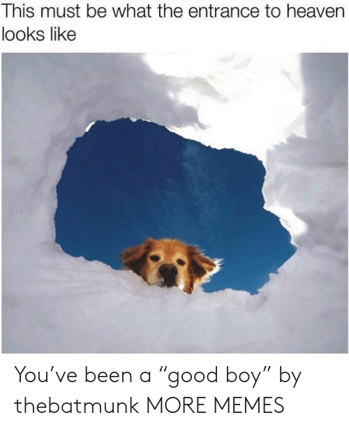 """Dank, Heaven, and Memes: This must be what the entrance to heaven  looks like You've been a """"good boy"""" by thebatmunk MORE MEMES"""