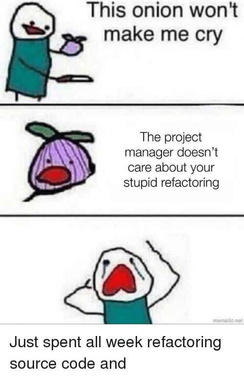 project manager: This onion won't  make me cry  The project  manager doesn't  care about your  stupid refactoring Just spent all week refactoring source code and