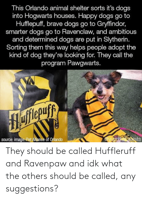 pet: This Orlando animal shelter sorts it's dogs  into Hogwarts houses. Happy dogs go to  Hufflepuff, brave dogs go to Gryffindor,  smarter dogs go to Ravenclaw, and ambitious  and determined dogs are put in Slytherin.  Sorting them this way helps people adopt the  kind of dog they're looking for. They call the  program Pawgwarts.  Hofitepuf  source: image. Pet Allance of Orlando  ists They should be called Huffleruff and Ravenpaw and idk what the others should be called, any suggestions?