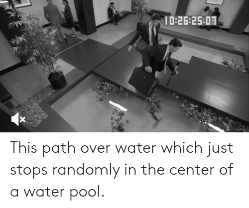 Pool: This path over water which just stops randomly in the center of a water pool.