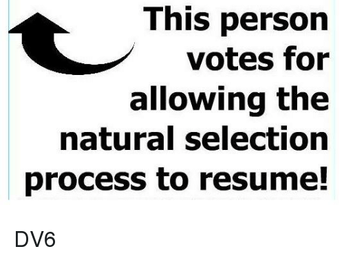 Memes, Resume, and 🤖: This person  votes for  allowing the  natural selection  process to resume! DV6