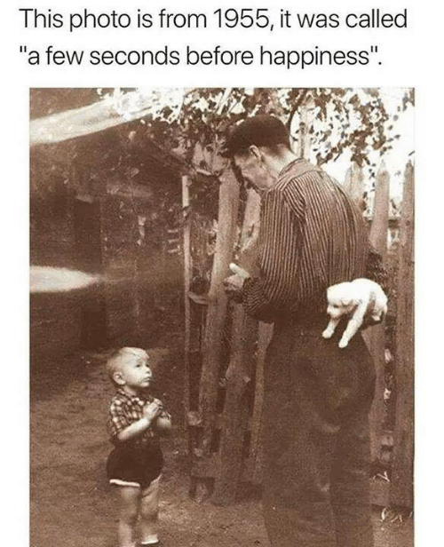 """Memes, Happiness, and 🤖: This photo is from 1955, it was called  a few seconds before happiness""""."""