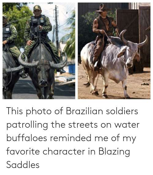 Favorite Character: This photo of Brazilian soldiers patrolling the streets on water buffaloes reminded me of my favorite character in Blazing Saddles