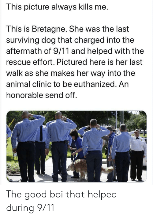 Clinic: This picture always kills me.  This is Bretagne. She was the last  surviving dog that charged into the  aftermath of 9/11 and helped with the  rescue effort. Pictured here is her last  walk as she makes her way into the  animal clinic to be euthanized. An  honorable send off. The good boi that helped during 9/11