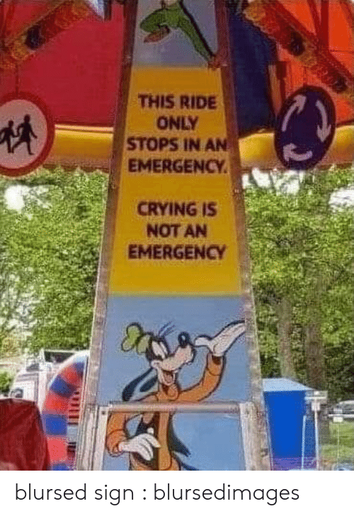 Crying, Emergency, and Sign: THIS RIDE  ONLY  STOPS IN AN  EMERGENCY  CRYING IS  NOT AN  EMERGENCY blursed sign : blursedimages