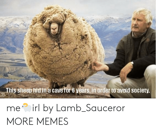 Dank, Memes, and Target: This sheep hidin a cavefor 6 years, in order to avoid society me🐑irl by Lamb_Sauceror MORE MEMES