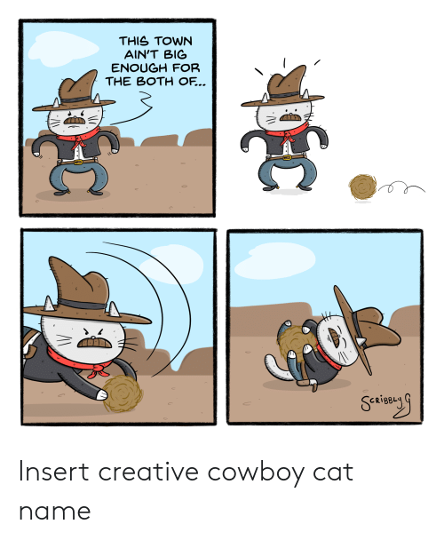 Creative: THIS TOWN  AIN'T BIG  ENOUGH FOR  THE BOTH OF... Insert creative cowboy cat name